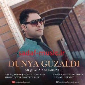 دانلود آهنگ جدید مجتبی آقارضایی به نام دونیا گوزلدی