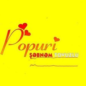 دانلود آهنگ ترکی شبنم تووزلو به نام پوپوری