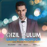 دانلود آهنگ ترکی وحید وحیدپور بنام قیزیل گولوم